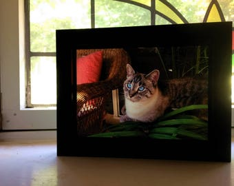 Your Life!  Window Frames! Send Your Favorite Photos to Create Lovely Backlit Pictures!  Place close to a  window and WOW!  5x7 picture.