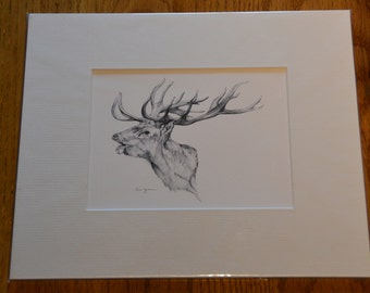 Stags head signed giclee print