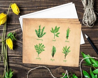 Little Herbs Folded Notecard Set - A2 Greeting Card - Stationery