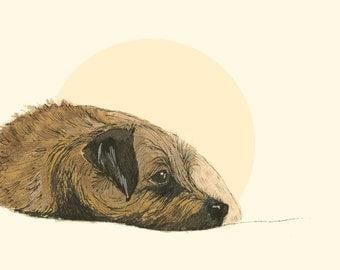 Greetings Card - Border Terrier