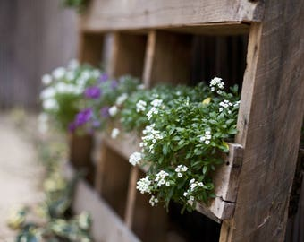 VERTICAL GARDEN PLANTER -  Perfect for balconies, backyards and cafes. 100% Australian Made. For an array of herbs, blooms, flowers.