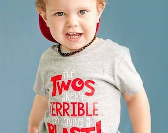 Terrible twos shirt, Two year old birthday shirt, 2 birthday shirt, birthday boy 2, second birthday shirt, funny toddler boy shirt, funny to