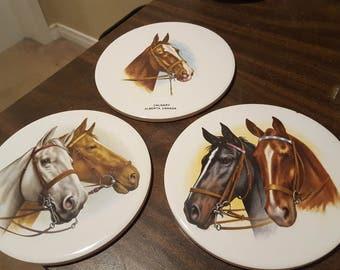 Reduced Price--3 Beautiful H &R Johnson Ltd Horse Decoration Plates