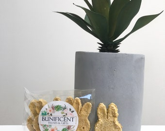 SAMPLE Carrot & Banana Bunny Cookies Treats (5)- Tasty Homemade Treats/snack/food for Pet Rabbits, Guinea Pigs and Mouse/Rats
