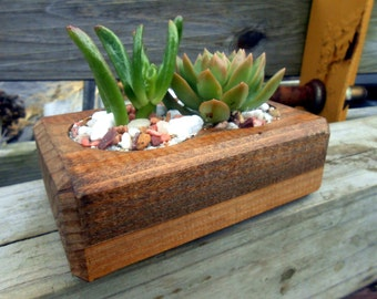 Small Wooden Succulent Planter