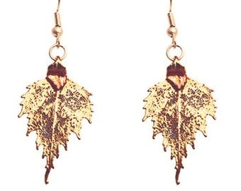 Gold plated real birch leaf earrings