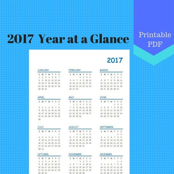 2017 Year at a Glance, Year on one page, Calendar Pages, Planner, Discbound, Jr, Half