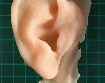 Right severed silicone ear