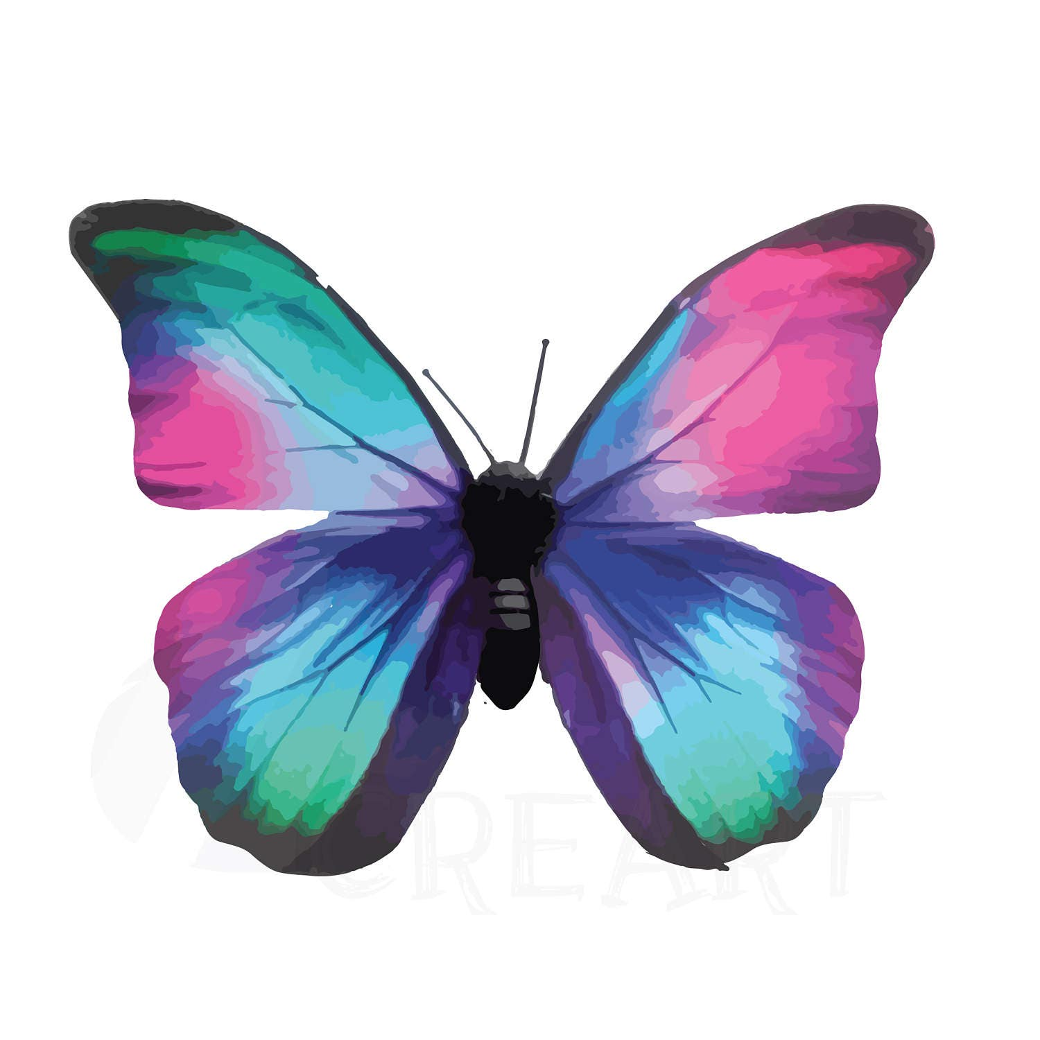 Paint Color Social Butterfly