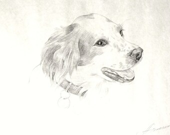 Disegno a matita cane etsy for Disegno di piano domestico