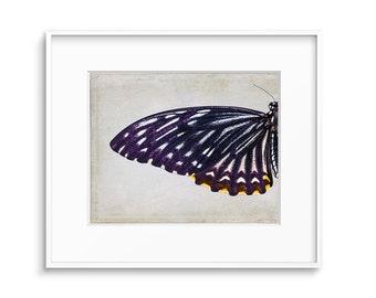 Bohemian Decor, Boho Decor, Bohemian Art, Butterfly Wings, Butterfly Art, Butterfly, Printable Art, Poster, Wall Art, Decor, Art, Wall Decor