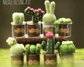 DIY Needle Felting Kit (8PCS Set), Cactus Garden Craft Felting Box, Succulent Gift Set, DIY Set