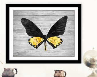 Wood Moth Art Print - Rustic Moth Art, Vintage Moth Art Print, Black Yellow Moth, Yellow Moth Art, Printable Yellow Black Moth Art, Insect