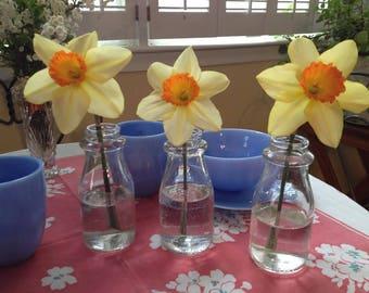 Vintage Glass Half Pint Milk Bottles Set of 3