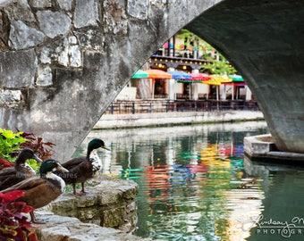 "San Antonio Photo | ""Along The Riverwalk"" | San Antonio River Walk Photo - Artistic San Antonio Print - San Antonio Picture - Urban Wildlife"
