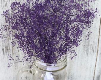 Real Dried Baby breath, Purple Gypsophila Bunch