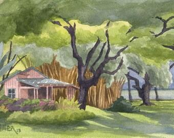 Hawaii Tropical Cottage Kauai Art Print - Bamboo Grove at Waimea Plantation Cottages, Hawaii watercolor painting, Kauai wall art