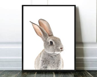 Rabbit Print, Lapin Imprimable, Baby Animals, Affiche Enfant, Nursery Room Print, Digital Download, Best Selling Item, Most Popular Item