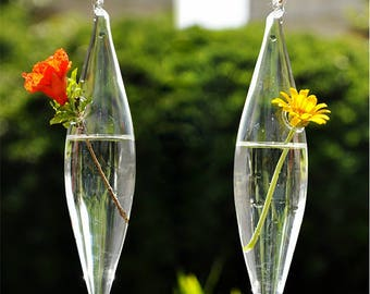1 pc Cute Clear Glass Olive Shape 1 Hole Flower Plant Stand Hanging Vase Hydroponic