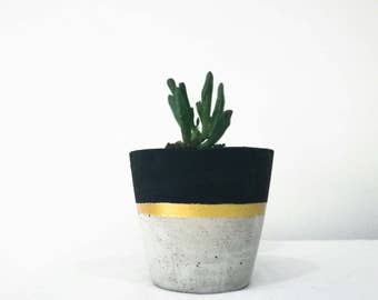 Small Concrete Planter with Black Painted Detail