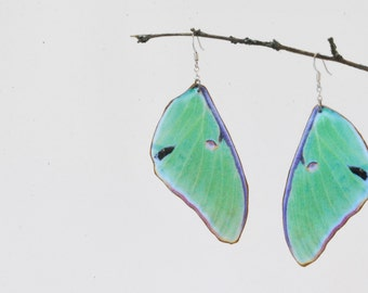Luna Moth Wing Earrings