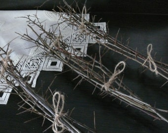 Blackthorn branches, thorny branches, home decor, rusting home decor, branches, magic wood, home decor, natural branches.