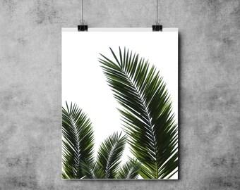 Botanical Print - Three Leaves - Green - (A4/A3)