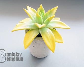 """Concrete pot """"SolarSucculentus"""""""