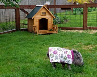 Mini Pig Organic Veggie Jacket