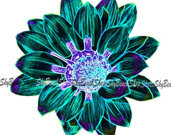 Black and Teal Daisy photograph, canvas print, various sizes