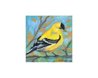 Goldfinch, bird art, limited edition