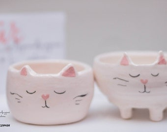 cat dish, for children and adults, cats family