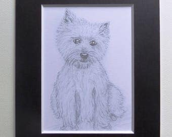 West Highland Terrier print: cute and loveable.