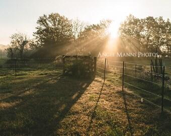 Farm Scene Photograph, Fence at Sunrise, Rustic Home Decor