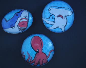 sea creatures, sharks, magnets