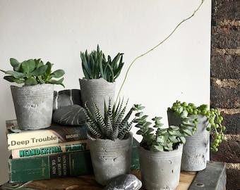 Industrial Concrete Solo Cup Succulent Planters