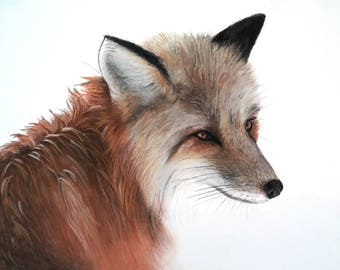 fox drawing, fox portrait, fox painting 9.4 x 12.6 inch, original art, fox lover gift, portrait from fox, woodland portrait, woodland art