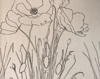 Poppies: Original 5x7 pen and ink drawing sketch