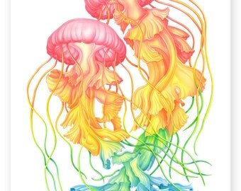 Rainbow Jellyfish - A4 Signed Giclee Print