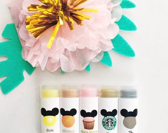Disney Park Flavored Lip Balm Set, Disneyland, Disney lip balm, Disneyworld,
