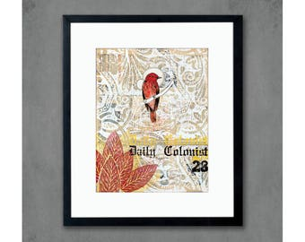 11 x 14 Vermilion Tea Flycatcher Bird Print on Paper