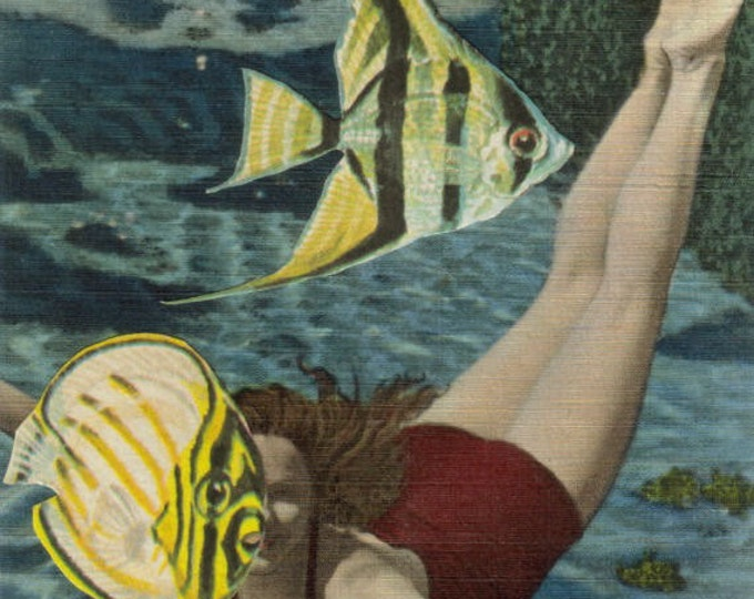 Underwater Art Collage, Undersea Artwork, Vintage Florida Postcard