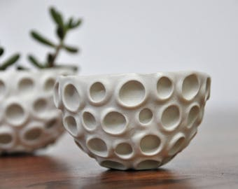 Tiny Conch Hanging Planter White Modern Ceramic Indoor