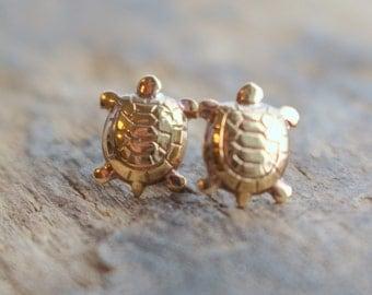 Golden turtle post stud earrings - Nature stud earrings