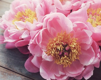 "Peony flower photography peony still life rustic floral wall art pink peonies print ""Peony Eleven"""