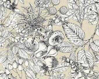 Encyclopedia Terrestria Toile Neutral Andover 100% Cotton Fabric, Off White Toile
