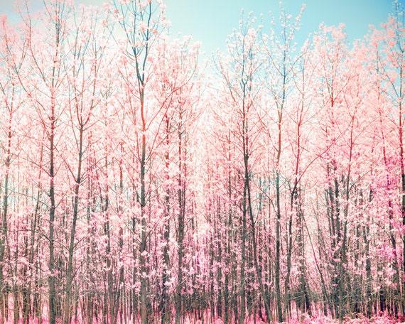 Pink and blue, spring decor ideas, pink blossoms, flowers, honeysuckle, girl's room decor, fruit trees, nursery art, valentine, princess