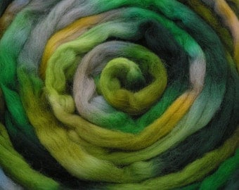 200g Space-Dyed Falkland Wool Top - Shamrock