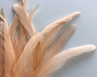 COQUE Tail Feathers Loose / Peachy Pink, Papaya /  198