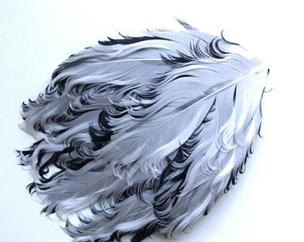 FEATHER PAD /  Curled Nagoire , White and Black  / 110